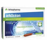 Arkocean Magnesium Marin Solution Buvable Caramel 20 Ampoules/10ml à BIAS