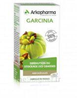 Arkogélules Garcinia Gélules Fl/45 à BIAS