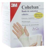 Coheban, Blanc 3 M X 7 Cm à BIAS