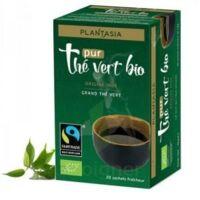 Plantasia Thé Vert Pur Bio Max Havelaar 20 Sachets à BIAS