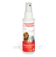 Clément Thékan Caniderma Solution Externe Cicatrisant Spray/125ml à BIAS