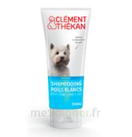 Clément Thékan Shampooing Poils Blancs T/200ml à BIAS