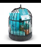 Les Cages Petit Bain Provence à BIAS
