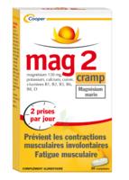 Mag 2 Cramp Comprimés B/30 à BIAS