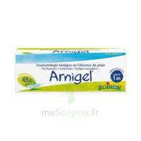 Boiron Arnigel Gel T(alumino-plastique)/45g à BIAS